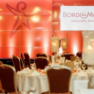Bord Na Mona stage at Tullamore Chamber Awards